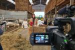 Opname viering Sint-Eloois te Herdersem