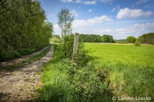 Projectcafés 'Langs pelgrimswegen naar Scherpenheuvel'