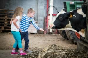 Hoevetoerisme: logeer op een actieve boerderij en beleef landbouw