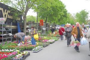 Plantenmarkten bij Landelijke Gilden