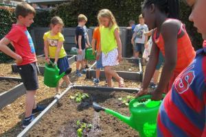 Leerlingen uit 135 scholen leren het tuinieren weer waarderen