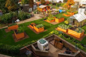 stadslandbouw, zicht op samentuin in Luchtbal
