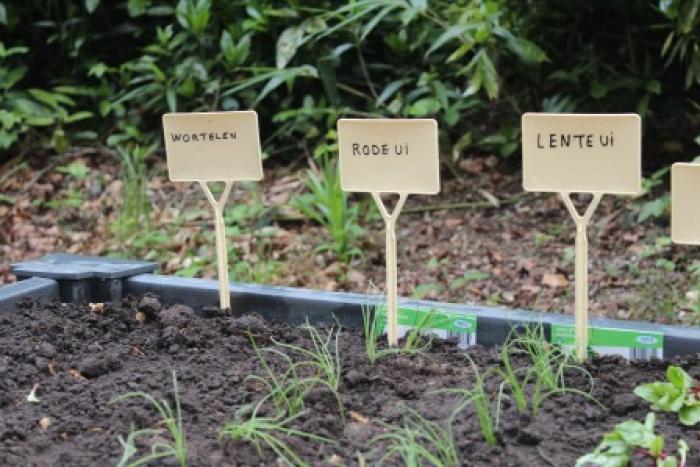Warme tuin Edegem, een detail van het resultaat