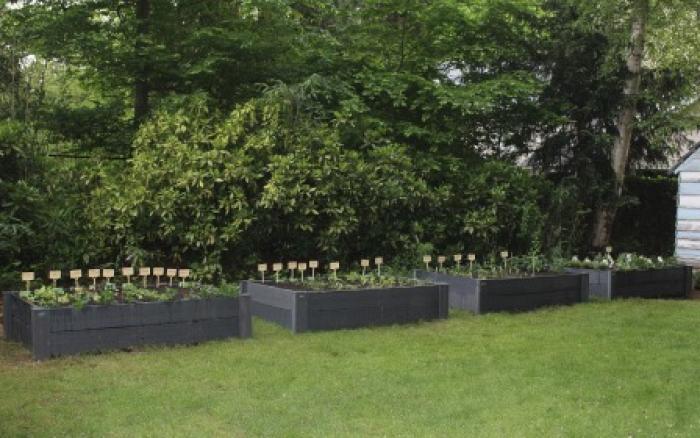 Warme tuin bij De Vlinderkens in Edegem klaar om te groeien