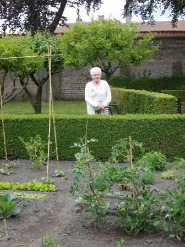 Bewoonster Engelendale op ronde in warme tuin
